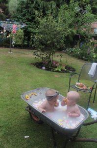 Two babies sitting in a wheel barrow of milky water in a garden.