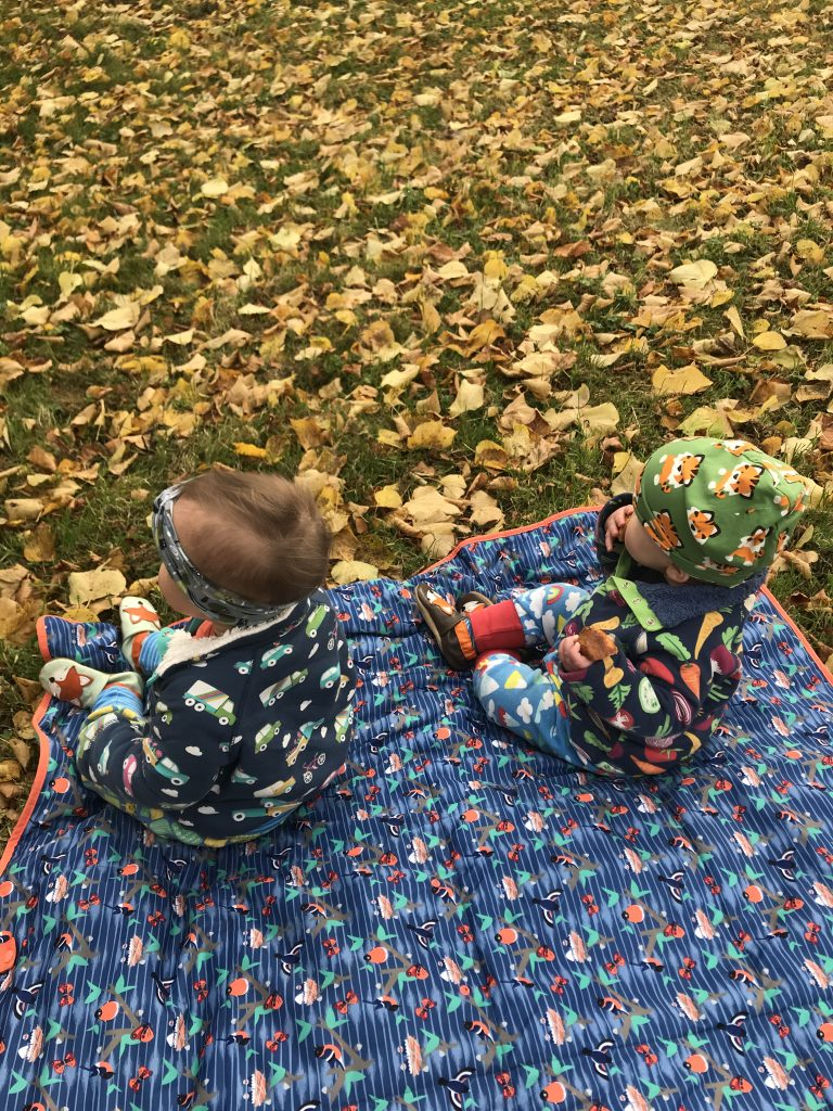 Twin babies sitting on a picnic mat amongst the golden autumn leaves.